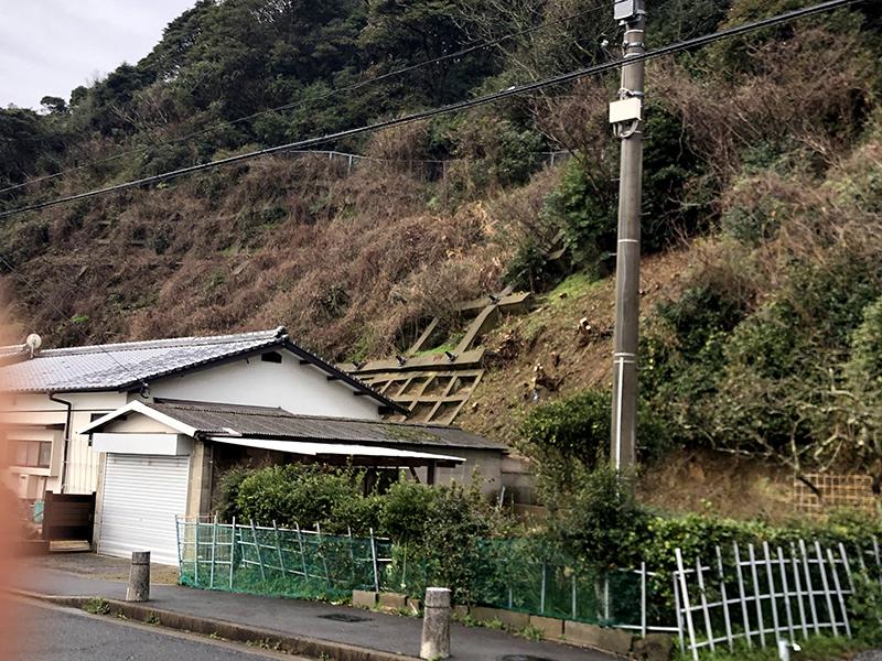 除草・伐採(裏山)