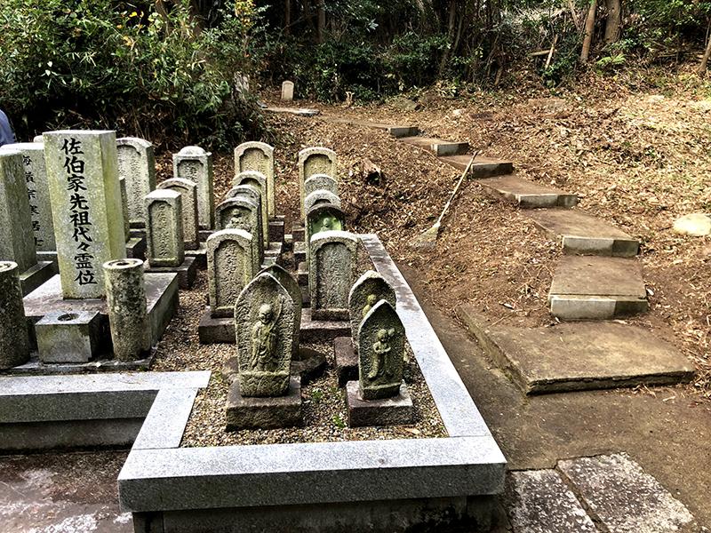 墓地除草・伐採