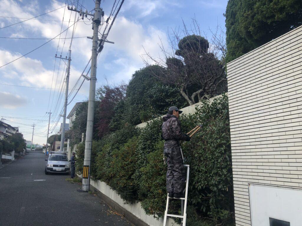 【施工中】草刈り・剪定